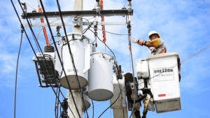 Rural Electric Cooperative Pricing